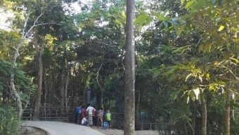 কোম্পানীগঞ্জের দক্ষিণ রণিখাই পূর্ণাছগাম রাস্তার ওপর বিদ্যুতের খুঁটি, ভোগান্তিতে মানুষ